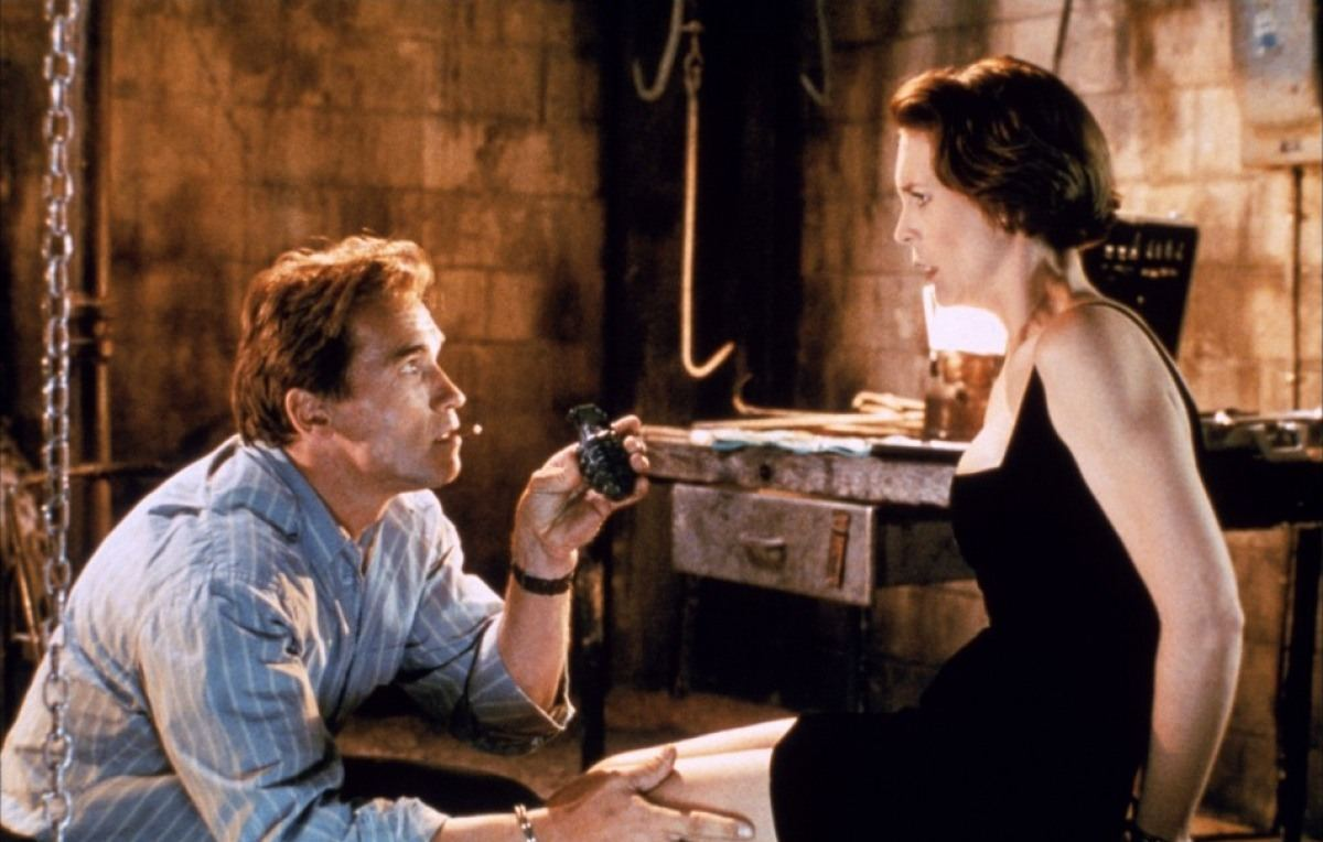 a film analysis of true lies directed by james cameron
