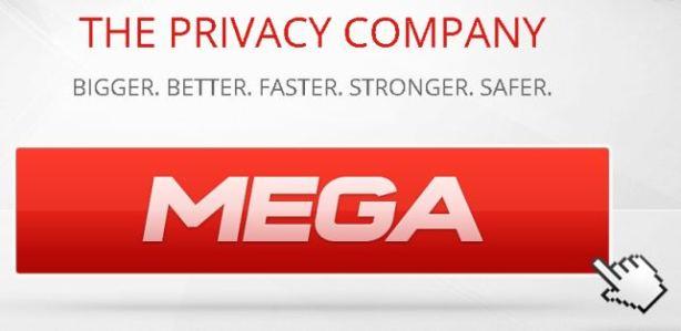 MEGA_Host